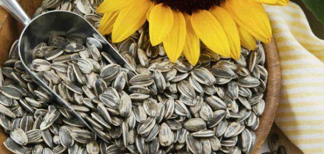 Sunflower-Seeds21
