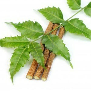 Amazing-Health-Benefits-Of-Neem-Leaves-150104557849803